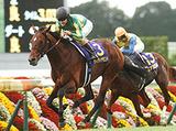 161023_kyoto11-winner