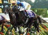 161016_kyoto11-winner