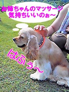 NEC_0414