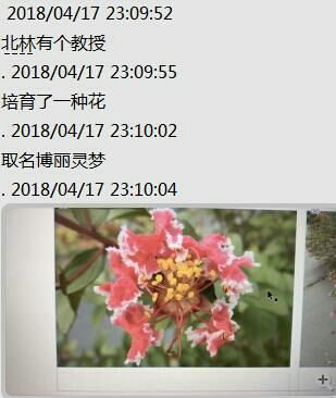 IMG_20180420_120609