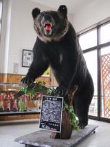熊太郎と再会