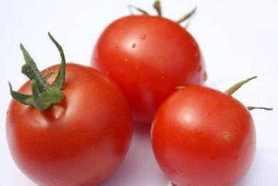 トマト リコピン 効果