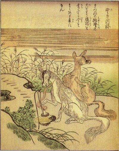 ShunsenNogitsune