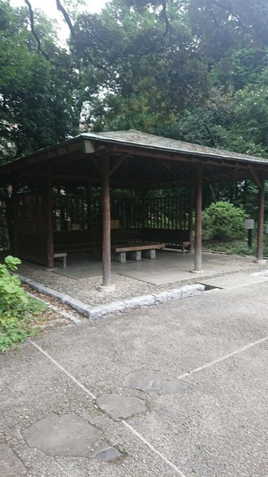 甘泉公園2