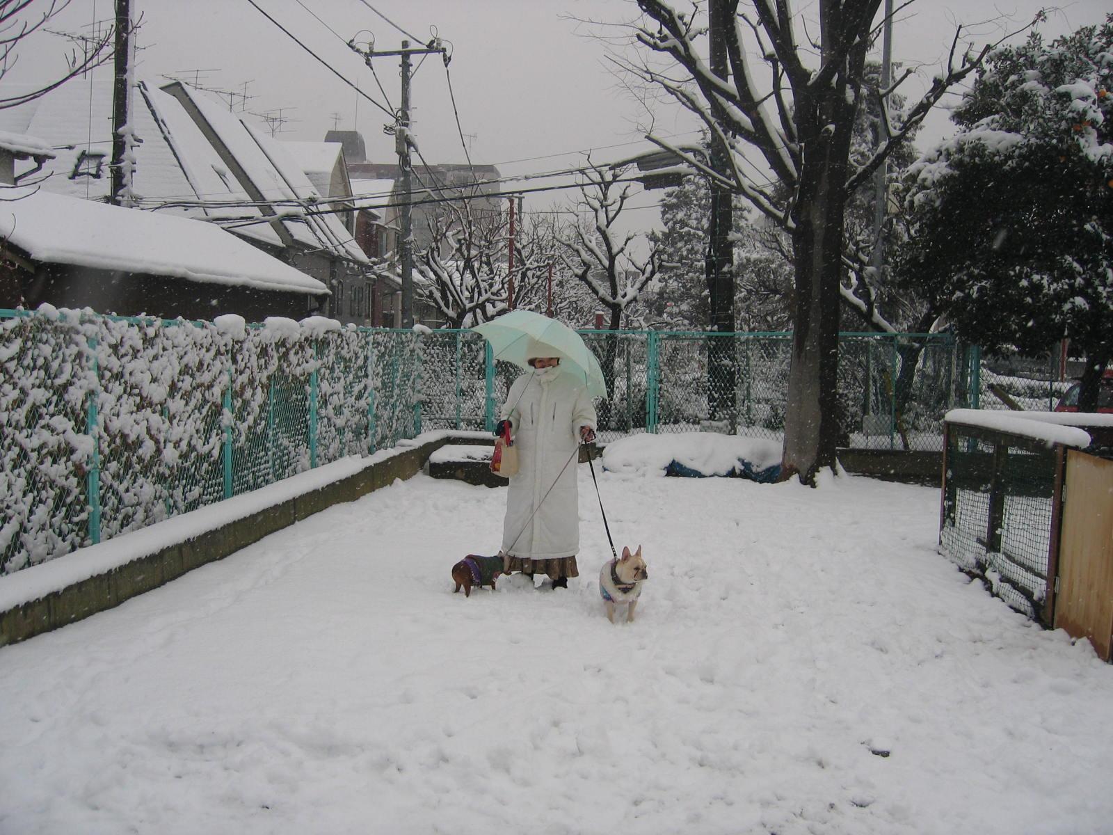 私も雪ダルマ?