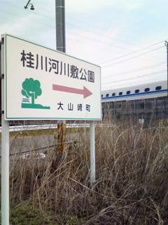 桂川河川敷公園