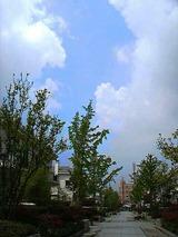 暑いぜ(-_-)