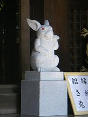 招き猫ならぬ、招き兔