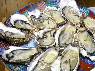 岩牡蛎ーーーーーー(≧∇≦)