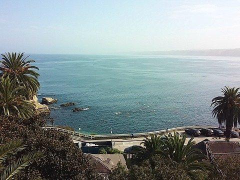 ocean view duke's