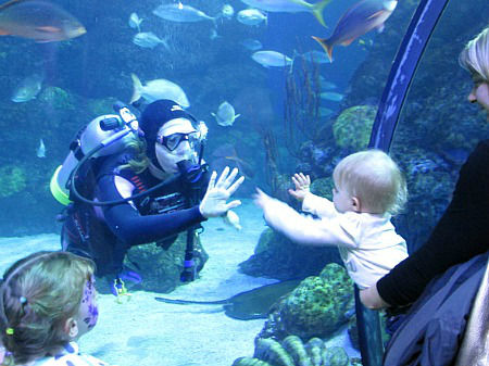 diver & baby