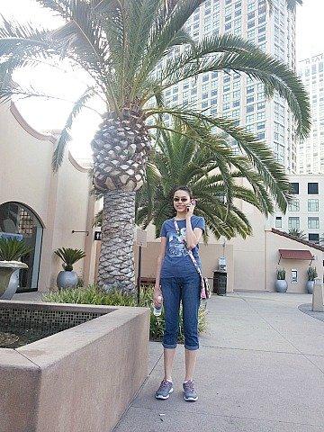 an palm