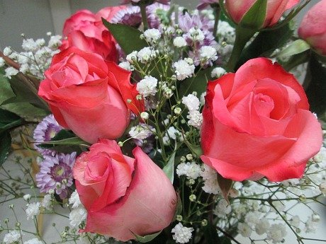 pm roses
