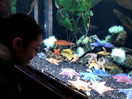 Angela & starfish