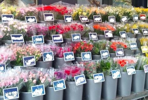 flowershop 20120314