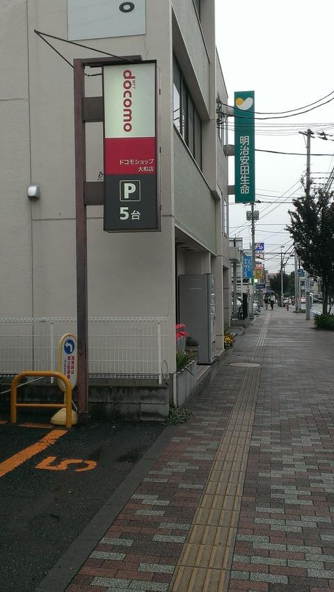 IMAG4509