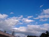 f2ba010f.jpg