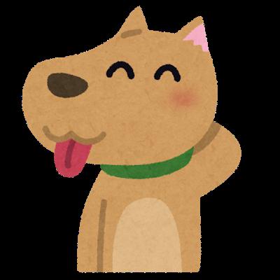 pet_tehe_dog