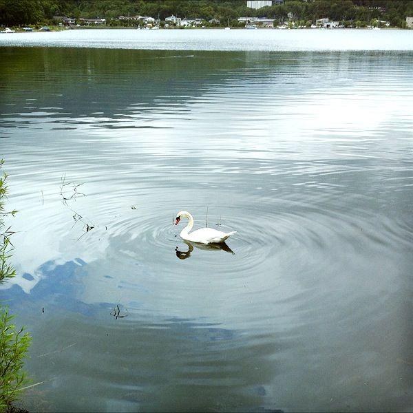 山中湖旅行の思い出 その1