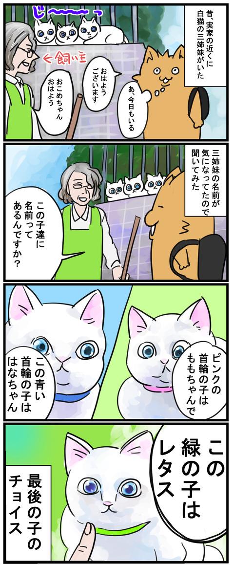 manga82