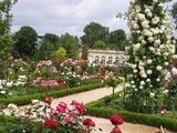 バガテル庭園
