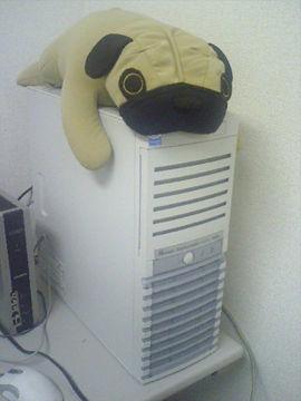 20061112-1.jpg