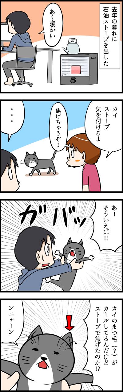 ネコにストーブは危険?