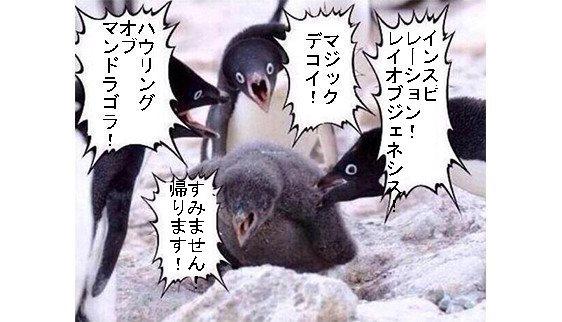 ペンギンコラ1