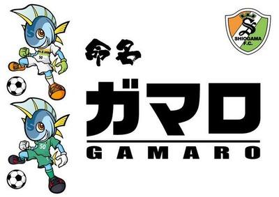 140209_gamaro