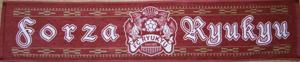 forza_ryukyu