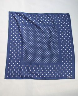 CAMCO First Color NAVY Dots