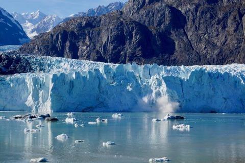 Calving sông băng và động vật có vú biển
