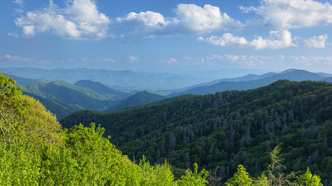 20552-great-smoky-mountains-national-park-landscape-c