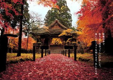autumn_2008_02_img_001