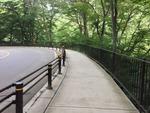 めがね橋(1)