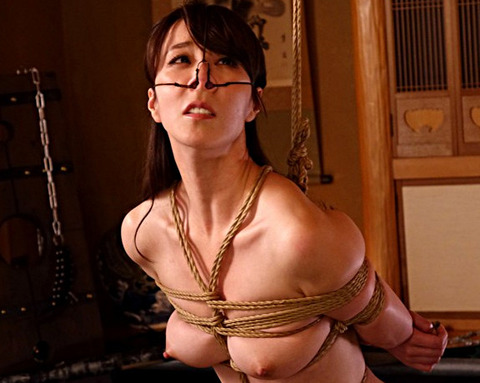 縄に堕ちた美人妻 あなたは悪くない…悪いのは私の身体 澤村レイコ