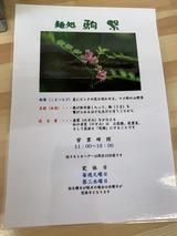 200209塩つけ麺 (9)