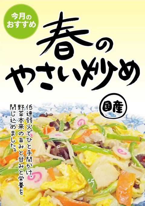 2017春の野菜炒めA3