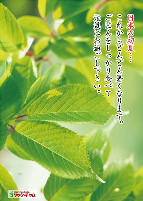 新緑A1ポスター