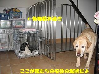 ゲージ紹介