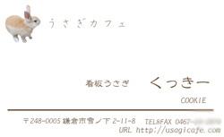 くっきーの名刺ができました。