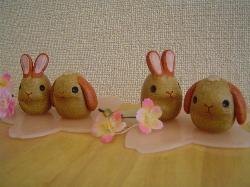 桜うさぎ1