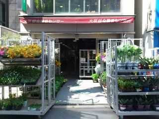 植物の管理、ネット販売|大阪府久太郎町1-9-4コー …
