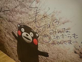 DSC_8264