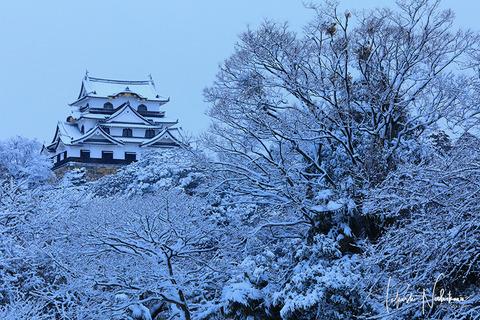 滋賀県 彦根城の雪景色
