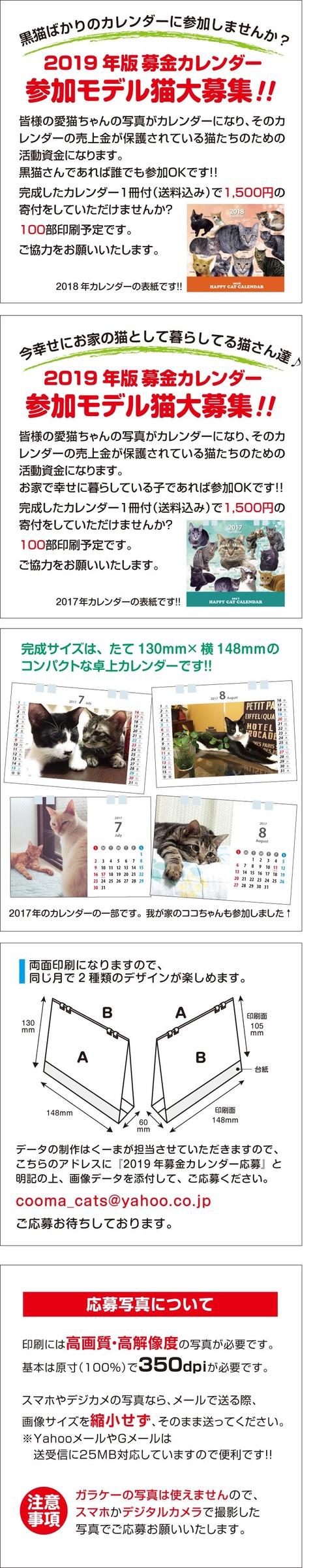 カレンダー募集用2019_黒猫