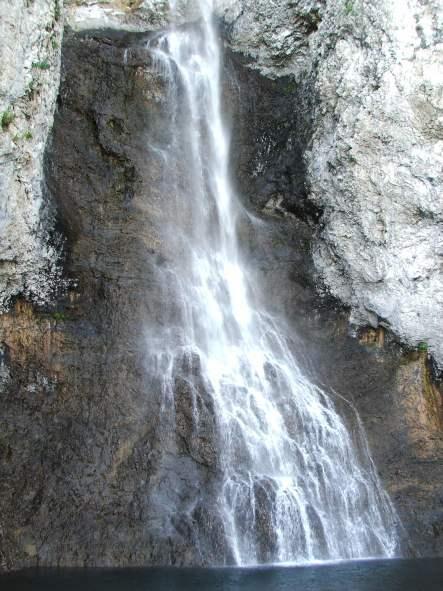 Fairy_fall05_2008.jpg
