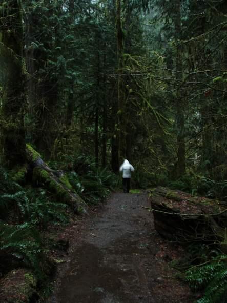 trail_04.jpg