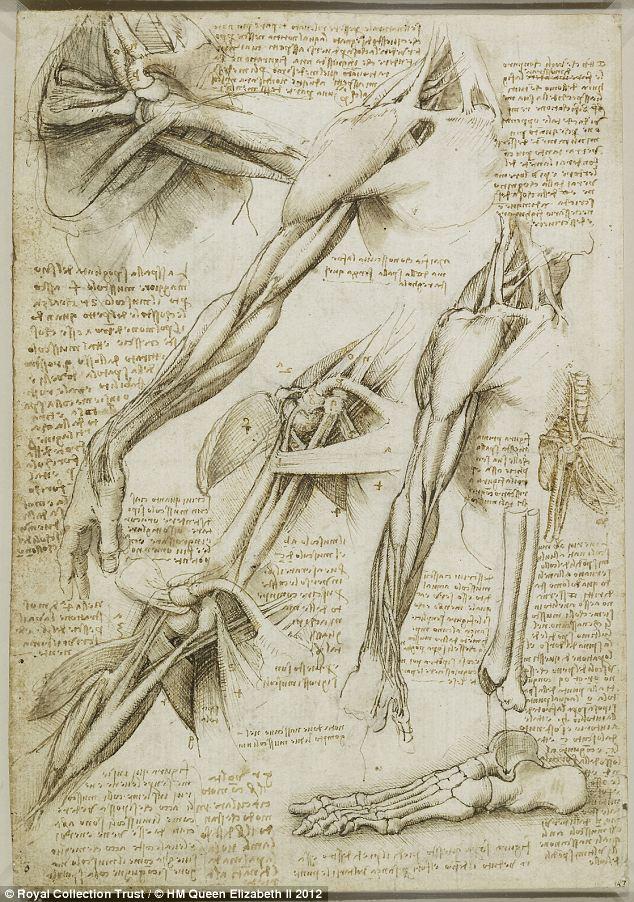 レオナルド・ダ・ヴィンチの画像 p1_38