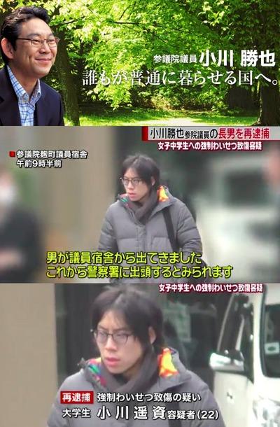 小川勝也参院議員の息子、小学女児の胸をわしづかみで再逮捕
